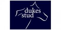 DukesStud320x160mini